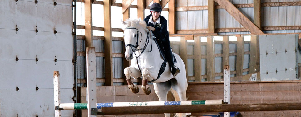 White horse jumping with rider